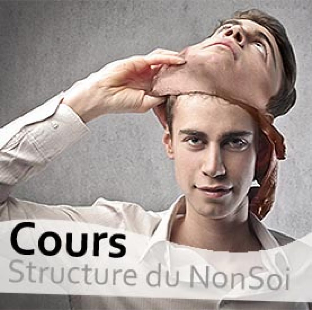 cours_la_structure_du_NonSoi_mental