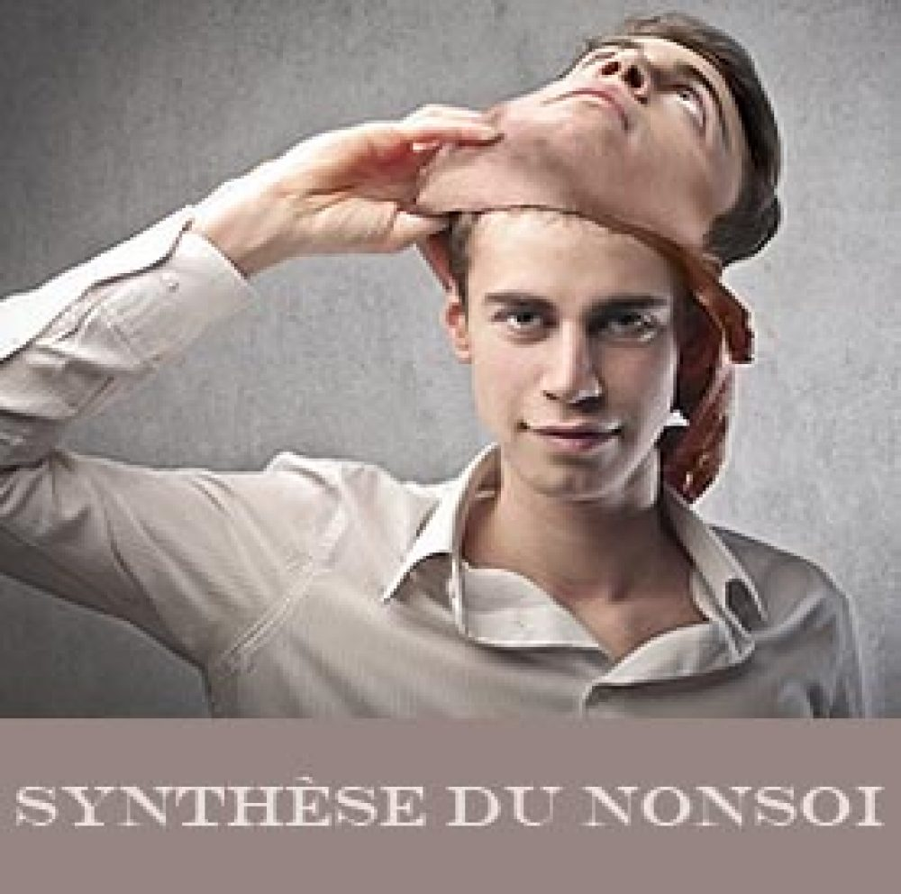 synthese-nonsoi