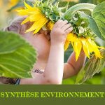 synthese-environnement-type