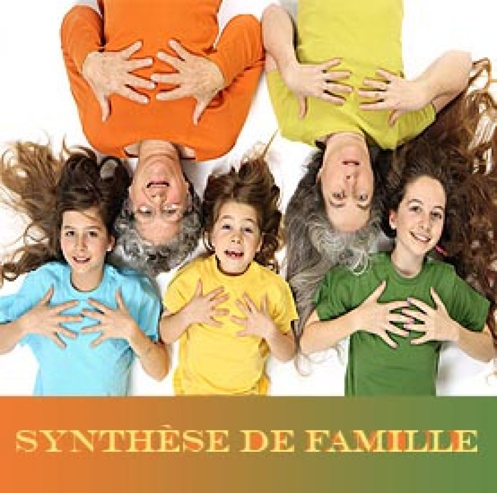 synthese-famille